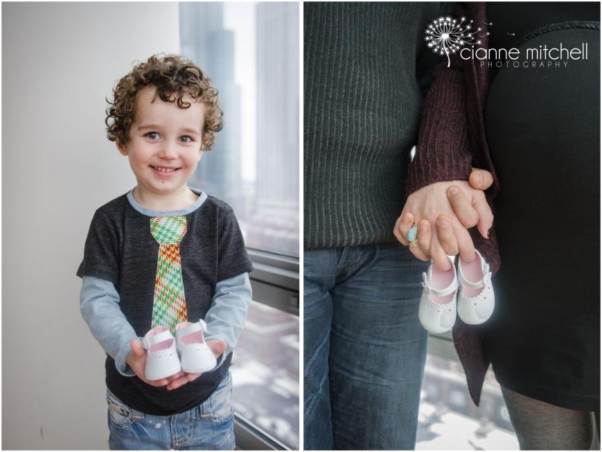 Chicago Pregnancy Photographer